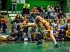 Lew Port wrestling tournament (28)