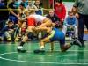 Lew Port wrestling tournament (53)