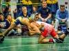 Lew Port wrestling tournament (61)