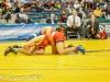 NYSPHSAA Wrestling Finals (202).jpg
