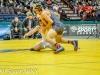 NYSPHSAA Wrestling Finals (230).jpg