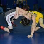 Class AA wrestling (14)