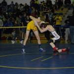 Class AA wrestling (7)