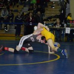 Class AA wrestling (9)
